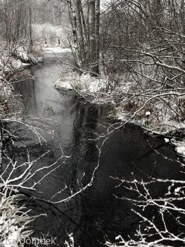 Winter Stream 3