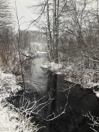Winter Stream 4