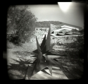 Taliesen West Sculpture, AZ by Peggy Hartzell (thumbnail)