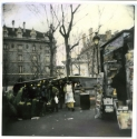 Winter Market, Paris by Peggy Hartzell (thumbnail)
