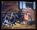 Photography--Alternative Processes-GenreCB Bike #4