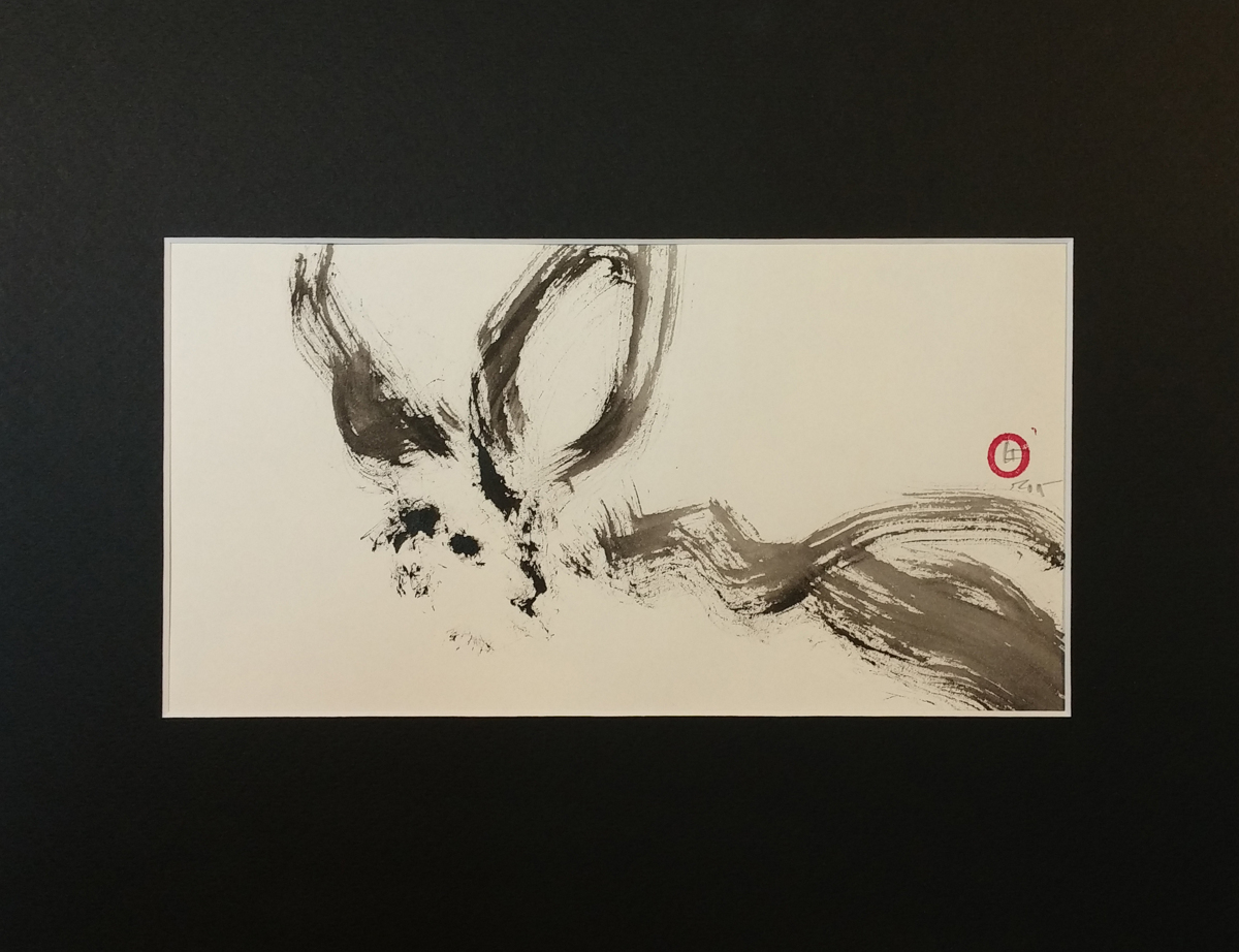 Long-eared bat (large view)
