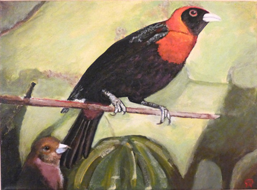 Crimson Colared Tanager