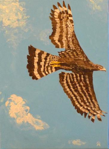 eagle-Hawk