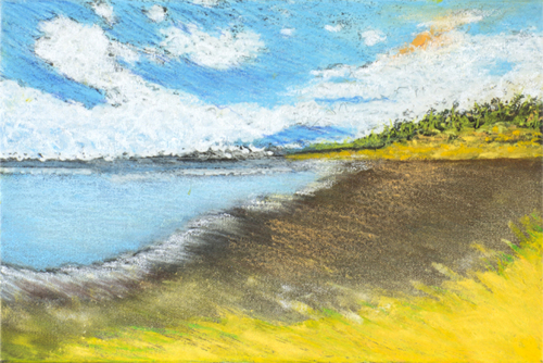 yellow grass - Matapalo Beach