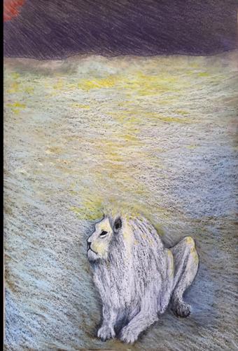 White Lion of Timbavati, S. Africa