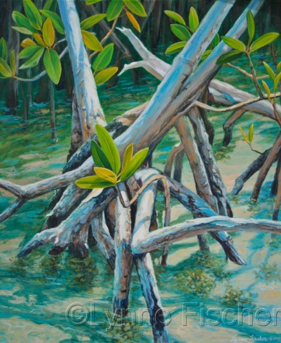 Backcountry mangrove by Lynne Fischer Studios