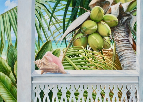 Coconuts and Conch by Lynne Fischer Studios