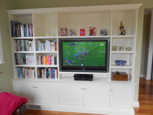 Built in TV unit and book shelves
