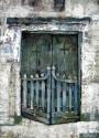 The door (thumbnail)