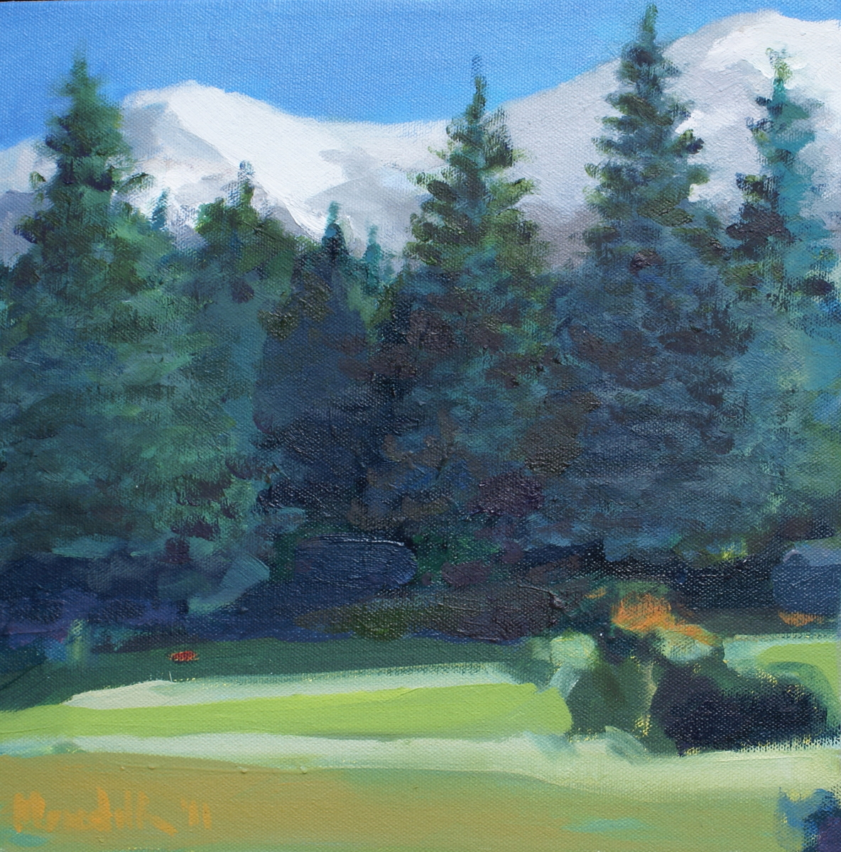 Mt. Shasta Meadow I (large view)