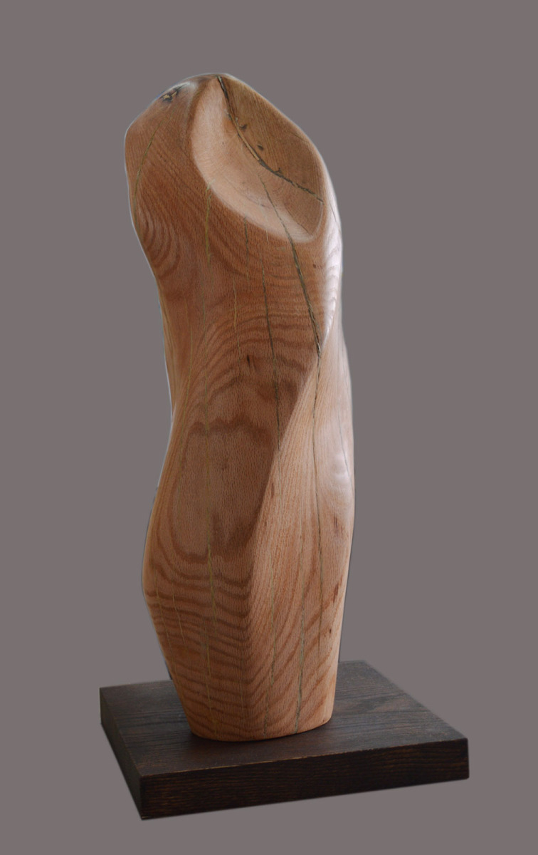 Biomorphic wood sculpture: flow by lilian r. engel