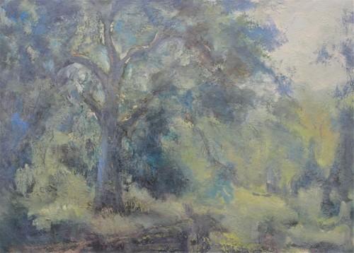 Sunlit mist