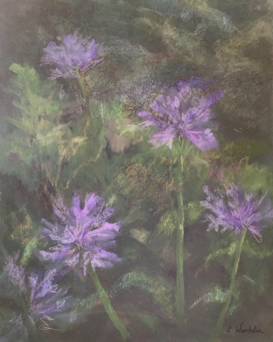 Agapanthus by Lillian Winkler