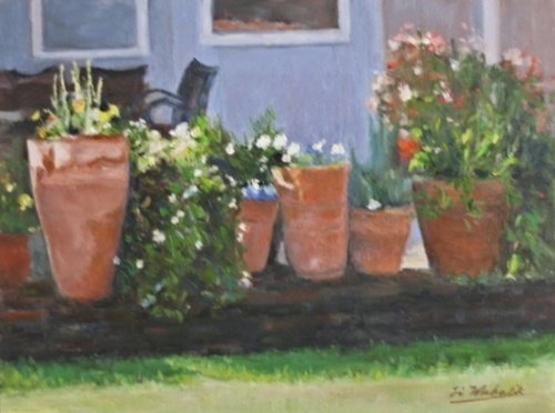 Pots of Flowers