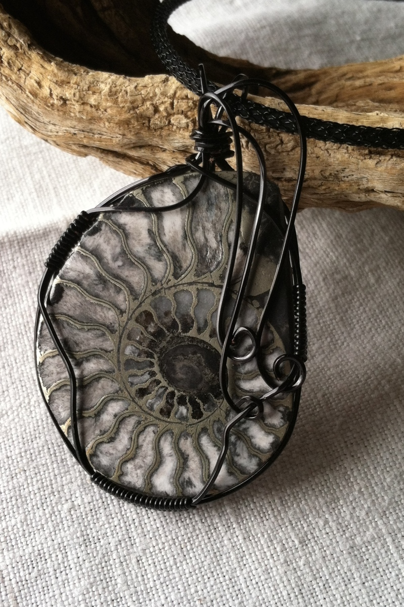 Pyritized Ammonite Wrapped in Black (large view)