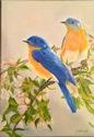 BLUE BIRDS (thumbnail)
