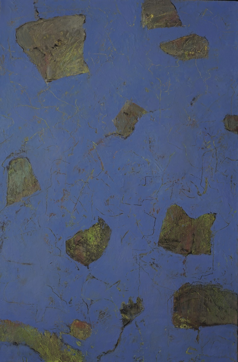 Organic Debris/ Desechos Organicos (large view)