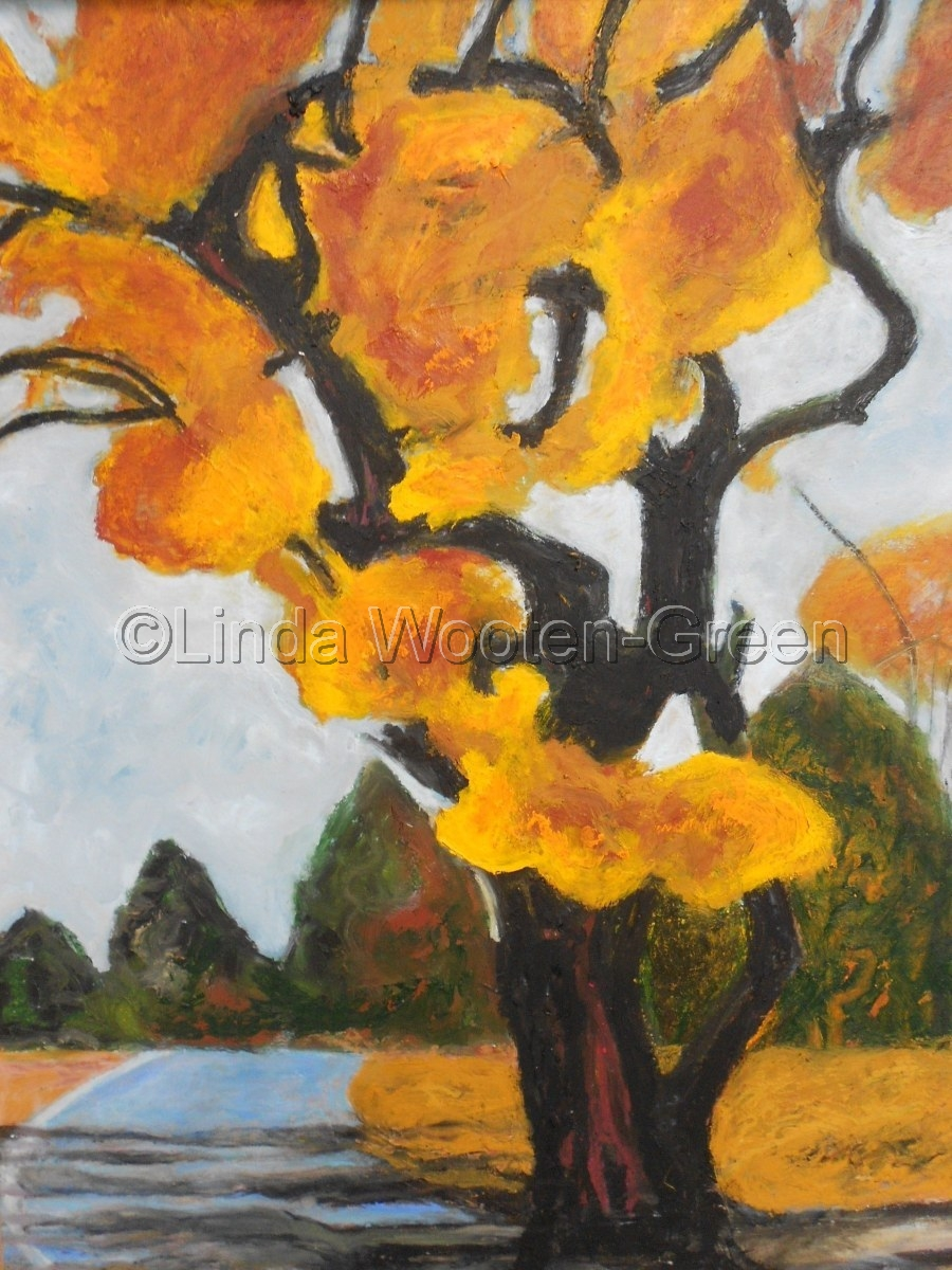Cinder Road Tree (large view)