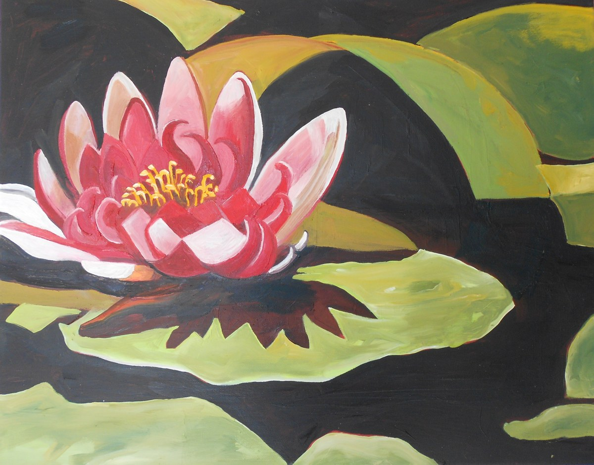 Pink Water Lily (large view)