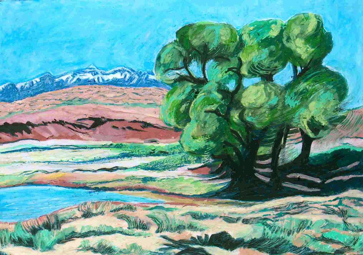 Desert Wetlands (large view)