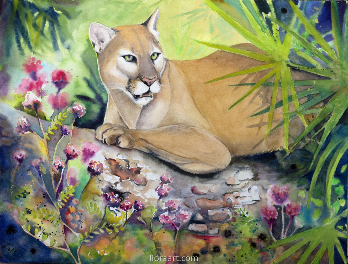 The Florida Panther (large view)