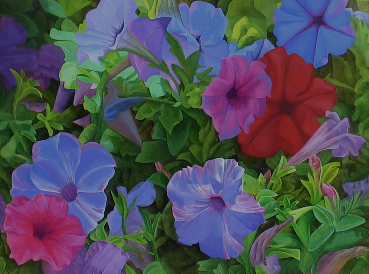 Summer Petunias  (large view)