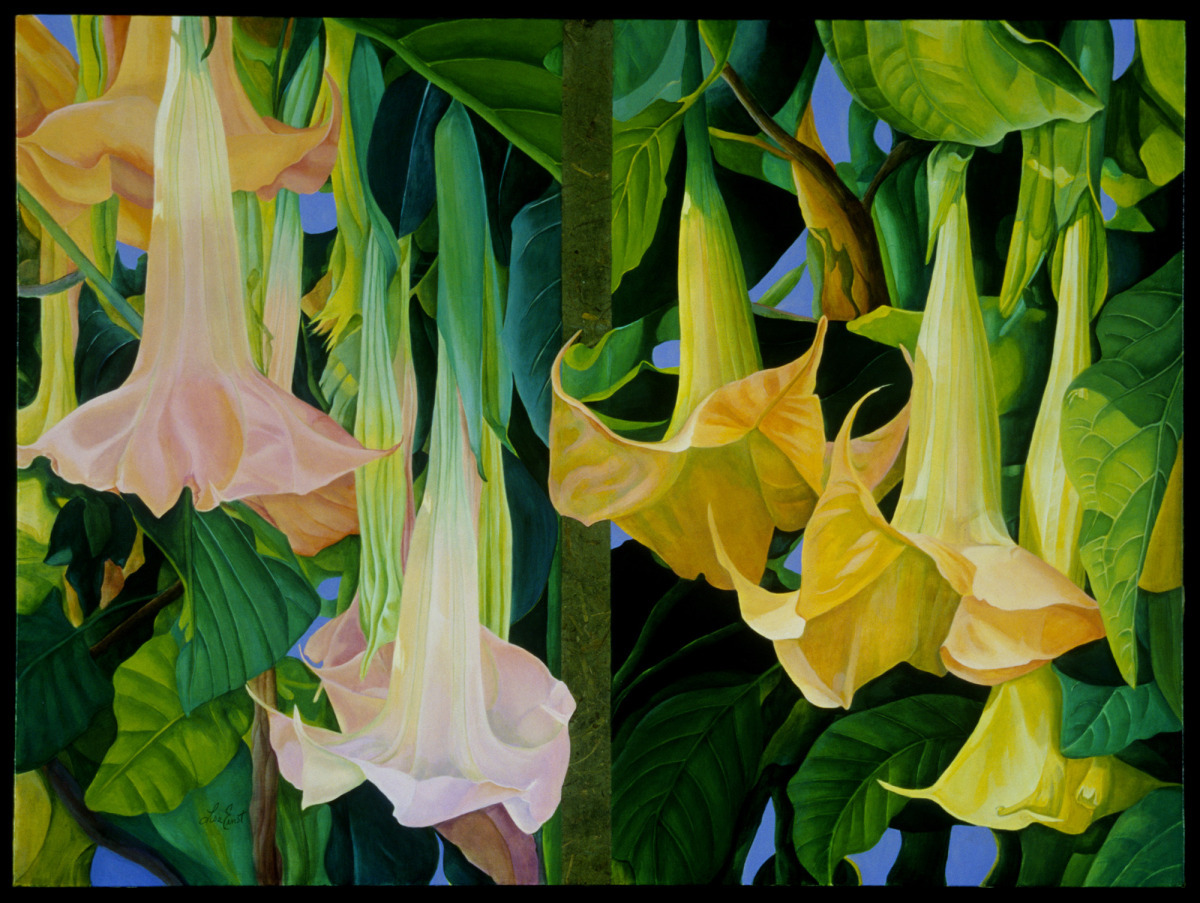 Trumpet Diptych (large view)