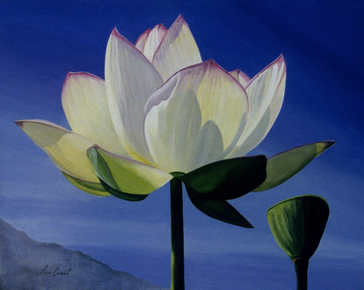 White Lotus with Cobalt  (large view)