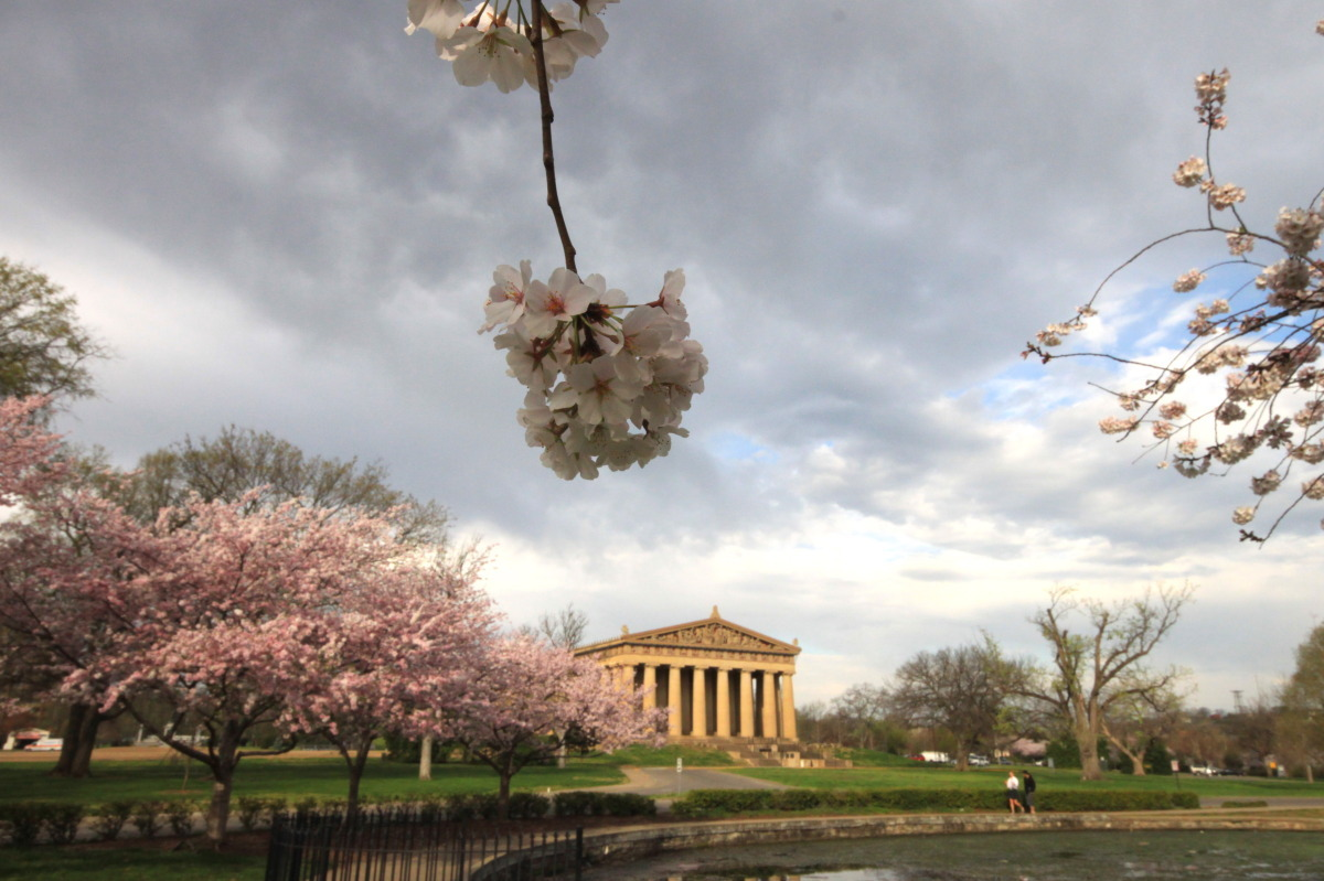 Nashville Parthenon in Spring (large view)