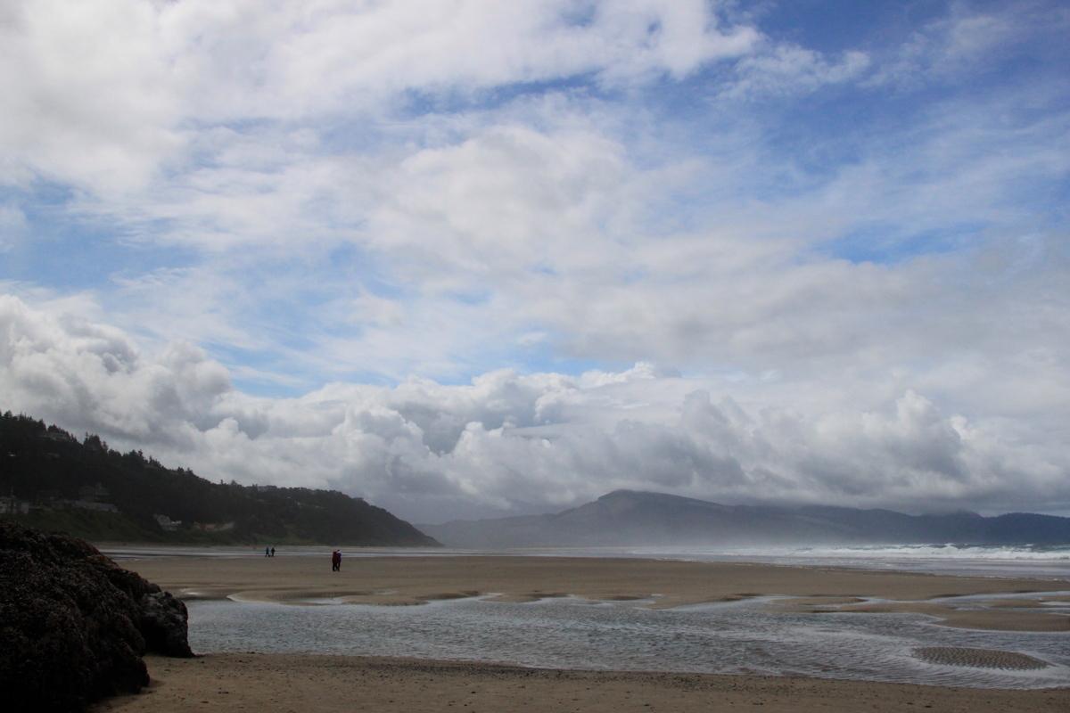 Oregon Beach  (large view)