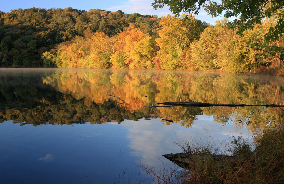 Fall Glory  (large view)