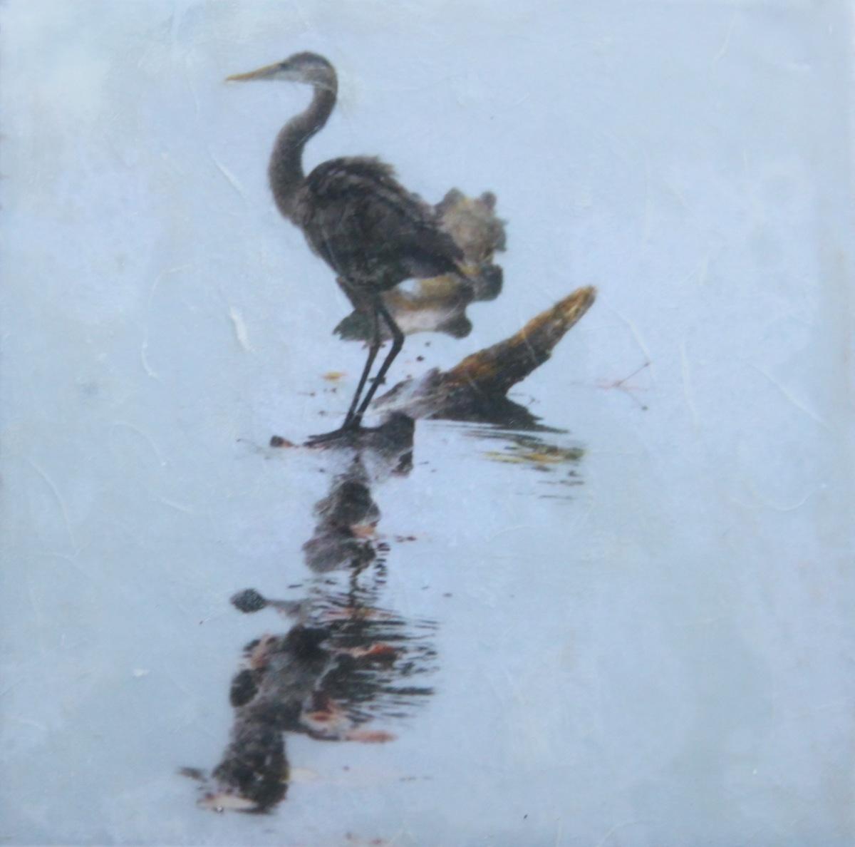 Blue Heron on Log (large view)