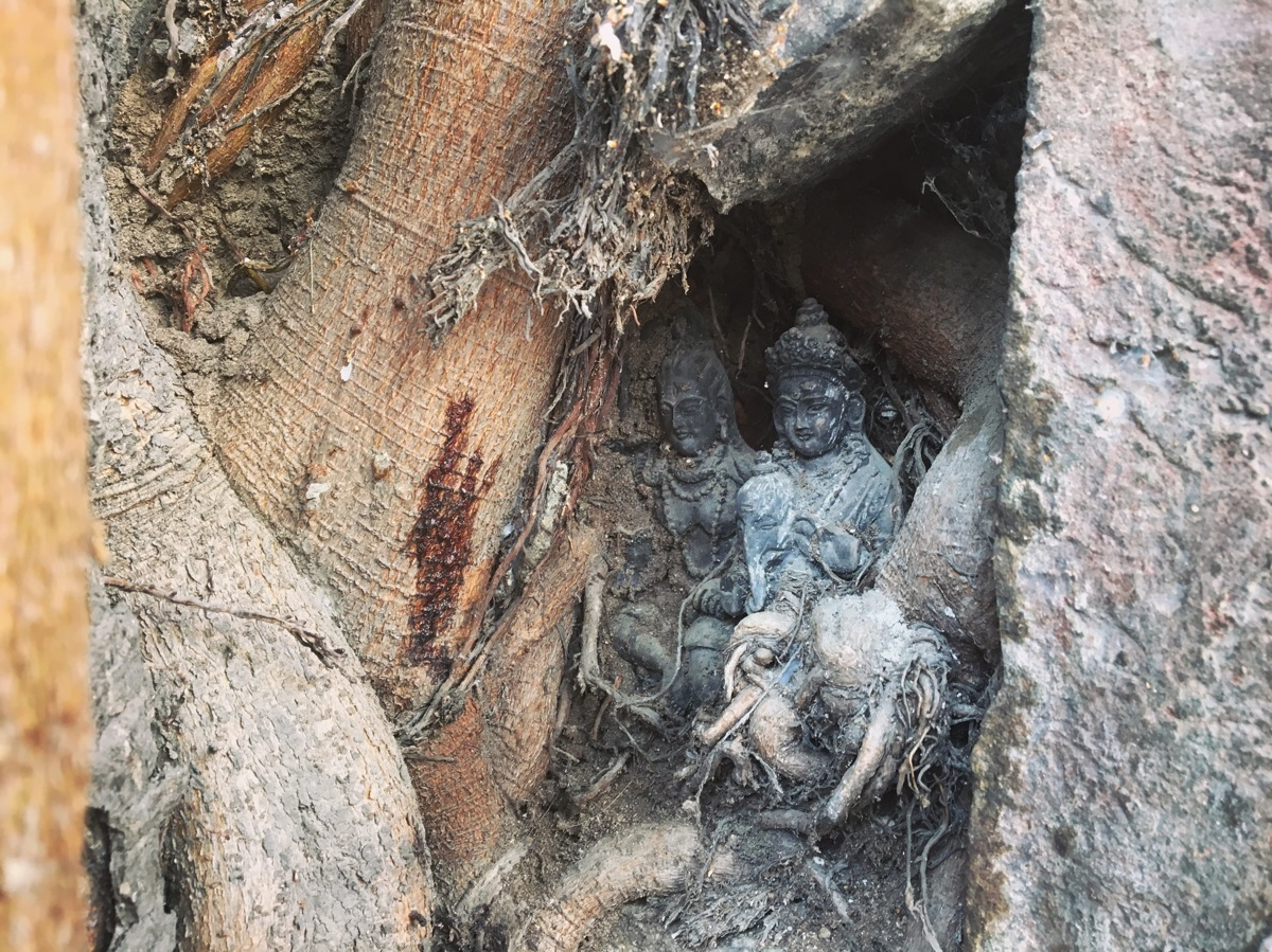 Statues in the Bodhi Tree (large view)