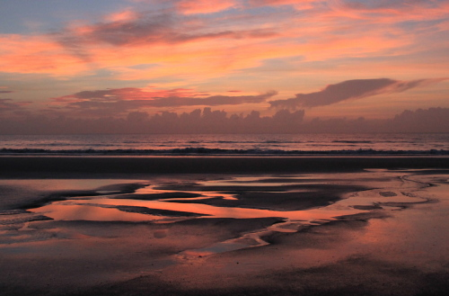 Red Sunrise on Amelia Island  by LISA ERNST
