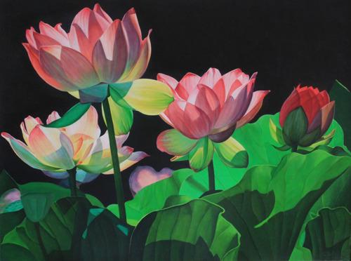 Backlit Lotus (large view)