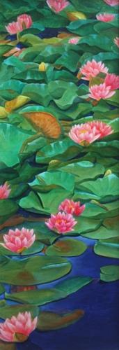 Summer Water Lilies