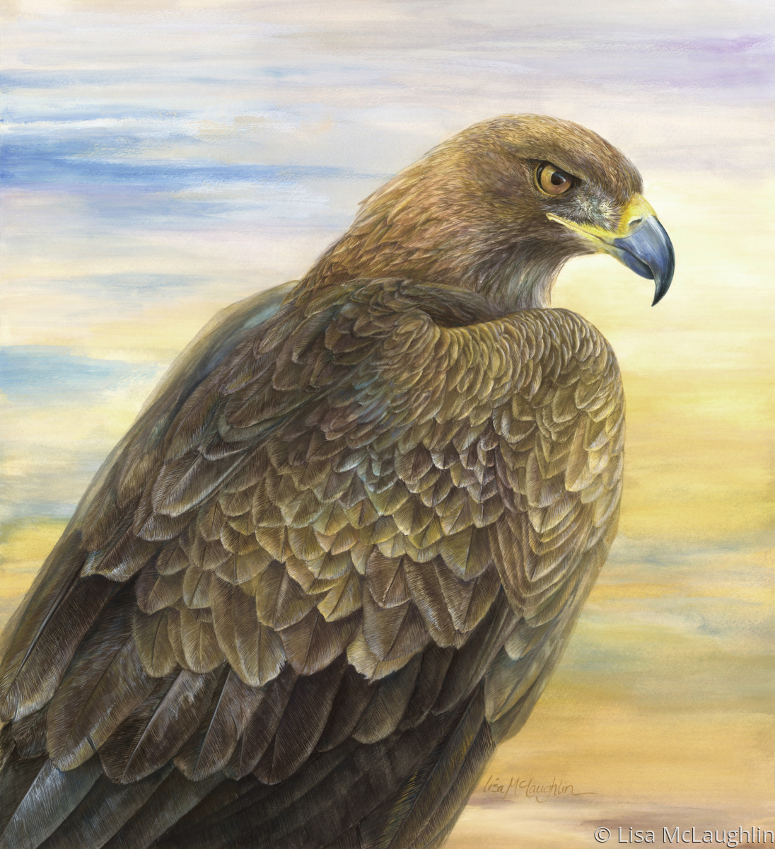 wildlife watercolor paintings desert golden eagle by lisa mclaughlin