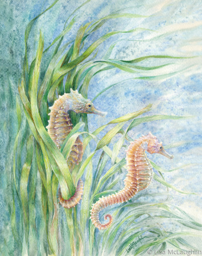 Seahorses floating along together