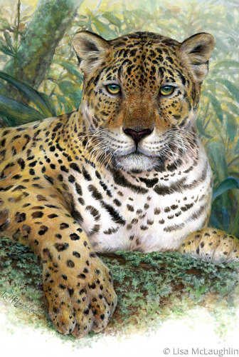rainforest Jaguar by Lisa McLaughlin