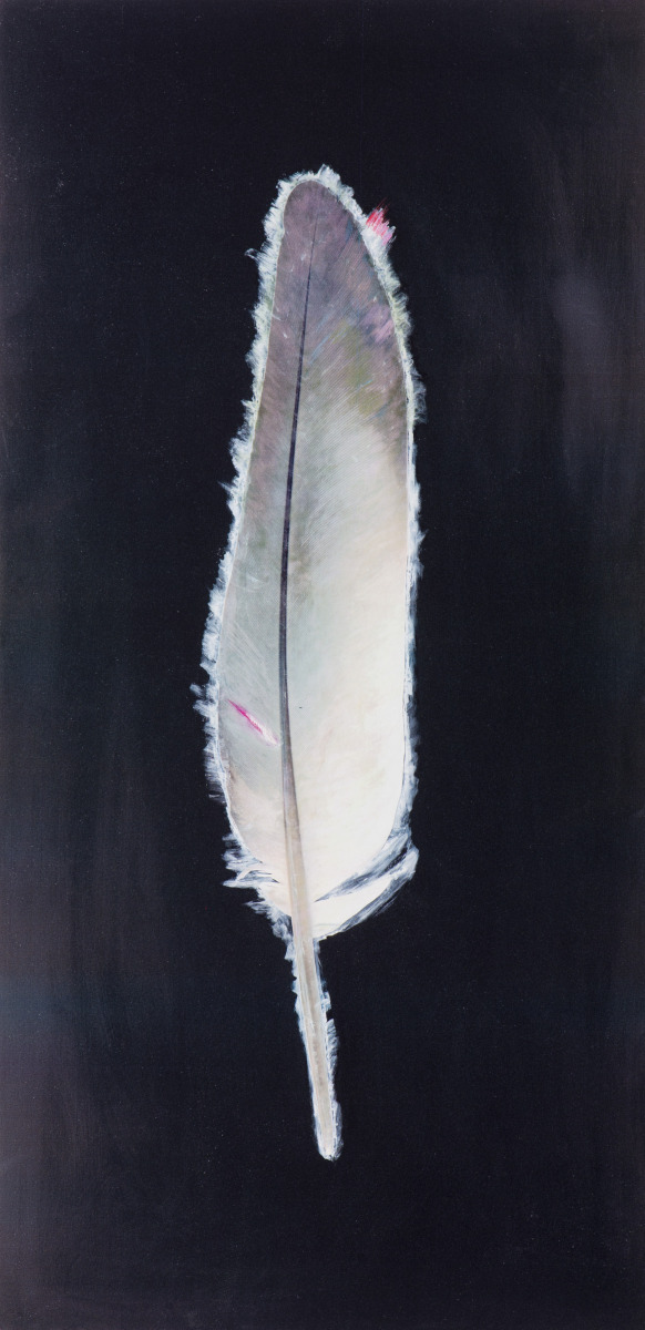 Feather (large view)