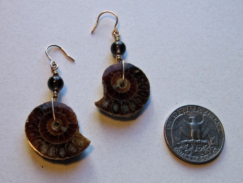 a11 ammonite earring