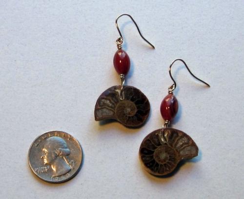 a13 ammonite earring
