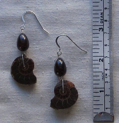 A14er ammonite earring (large view)