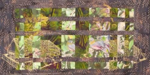 Backyard Bushtits #3
