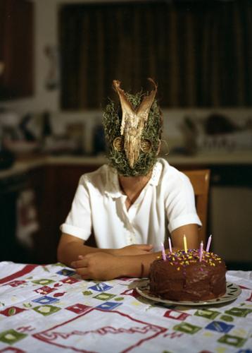 Cake by Laura J. Bennett