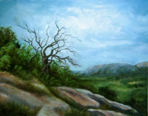 Lone Oak on Dutch Mountain