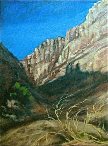 Dry Riverbed Rio Grande