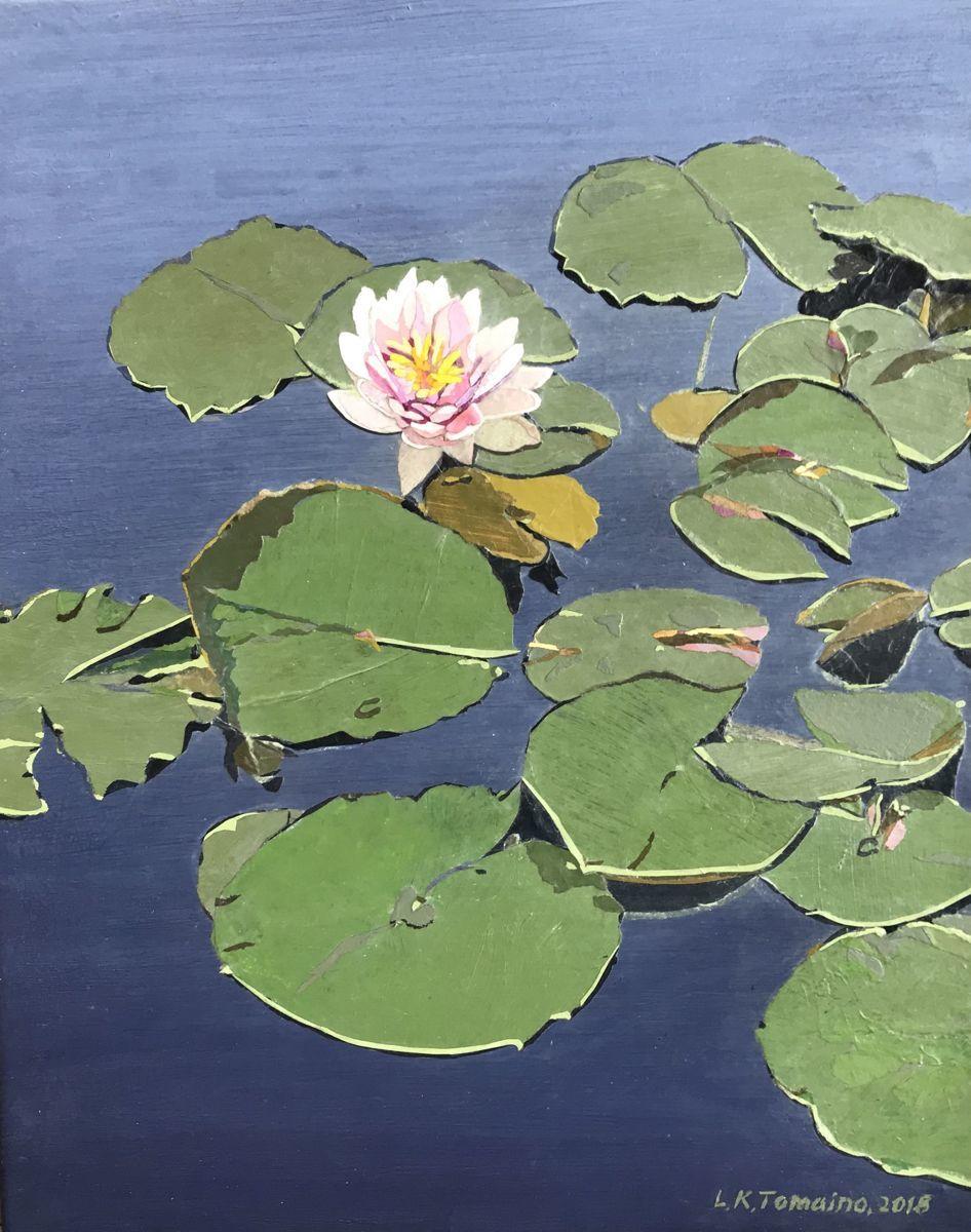 Waiting Lotus (large view)