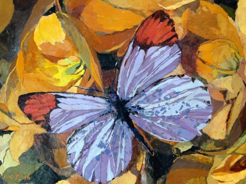 Butterfly Rainbow, For Matisse